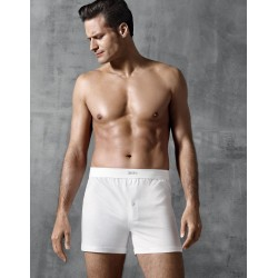 1271001 Boxer Pure Cotton Impetus